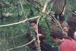 Construction of Menstrual Hut in Dreamtime Village Orchard August, 1992