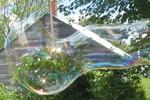 longbubble